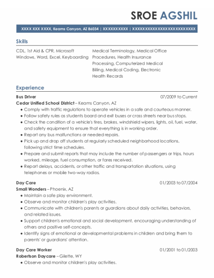 Bus Driver resume sample Arizona