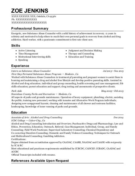 pyramid alternatives substance abuse counselor resume