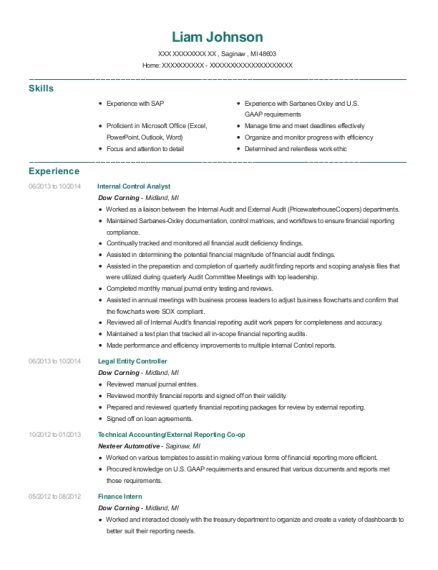 Internal Control Analyst resume format Michigan