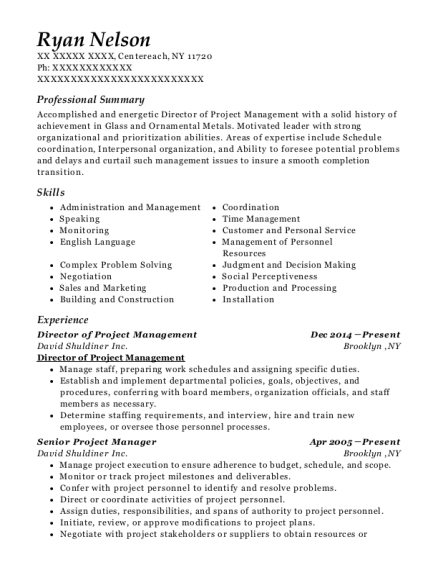 Director of Project Management resume sample New York