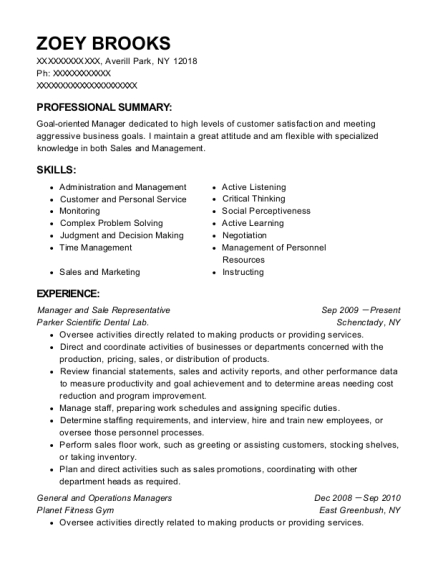 Manager and Sale Representative resume format New York